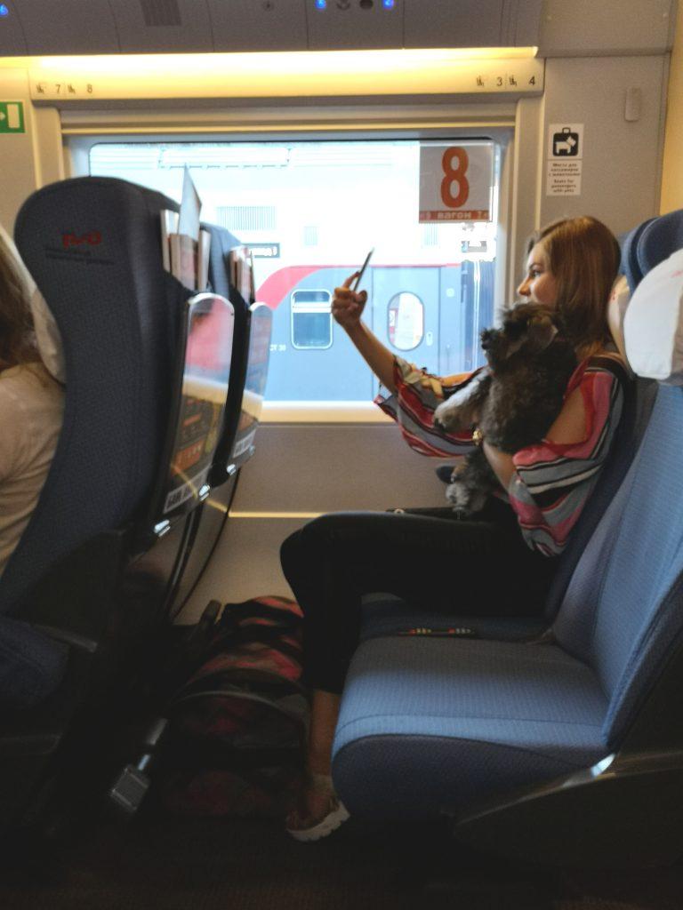 Sapsan train seat